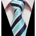 Hedvábná kravata LD0398
