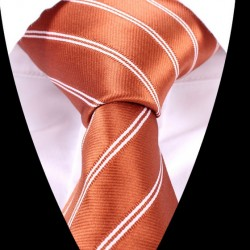 Hedvábná kravata LD0524