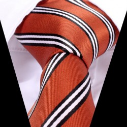 Hedvábná kravata LD0540