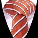 Hedvábná kravata LD0555